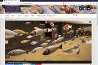 Ο επίσημος ιστότοπος της κεραμίστριας Μαρίτσας Τραυλού